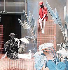 Botanical Garden @ Max&Co. Flagship Store//Milano